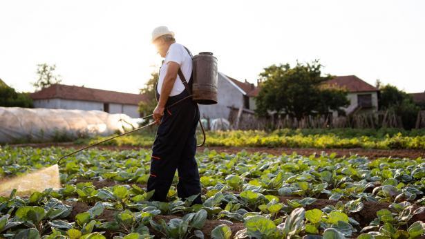 I pesticidi aumentano il rischio di diabete