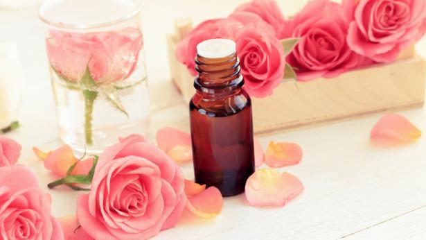 Olio di rosa mosqueta, alleato di bellezza contro rughe e cicatrici