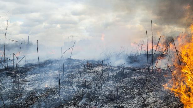 Incendi, fumo e ceneri: i rischi per la salute