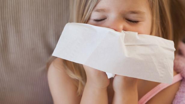 Muffe e allergie