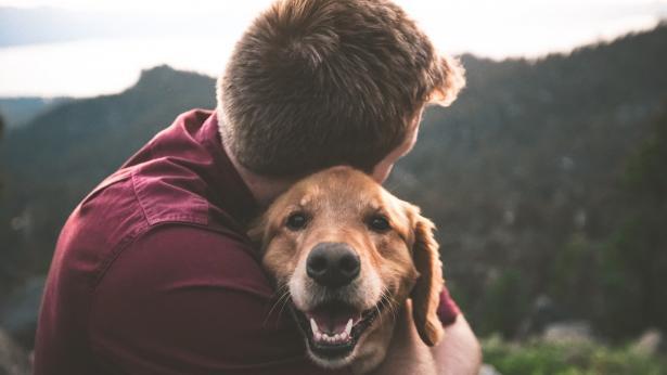 Cos'è la pet therapy e quali sono i benefici