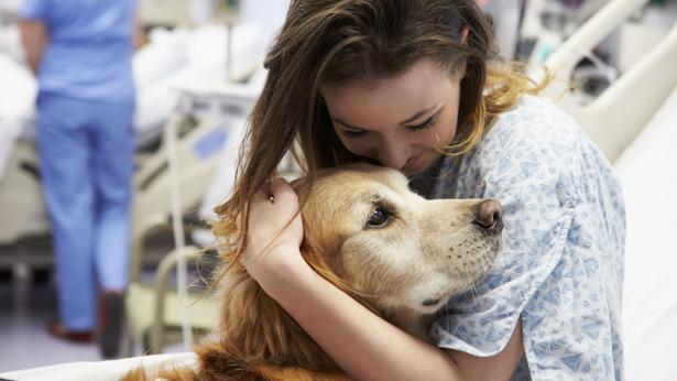 Qual è il significato della pet therapy