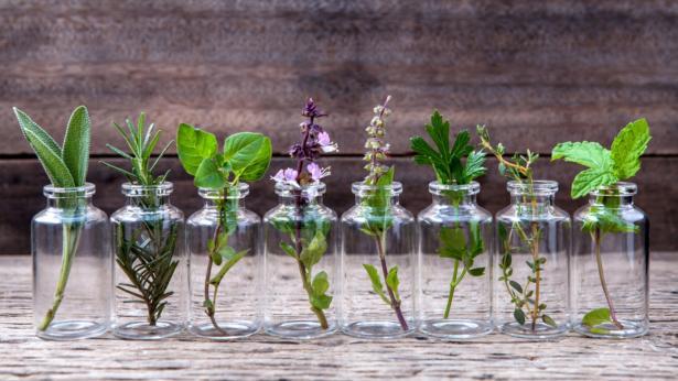 Aromaterapia, le virtù degli oli essenziali