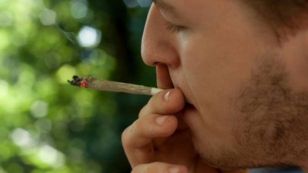 Cannabis legale: quali sono gli effetti e i rischi?