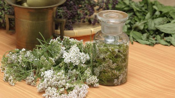 Galenica: curarsi con le piante