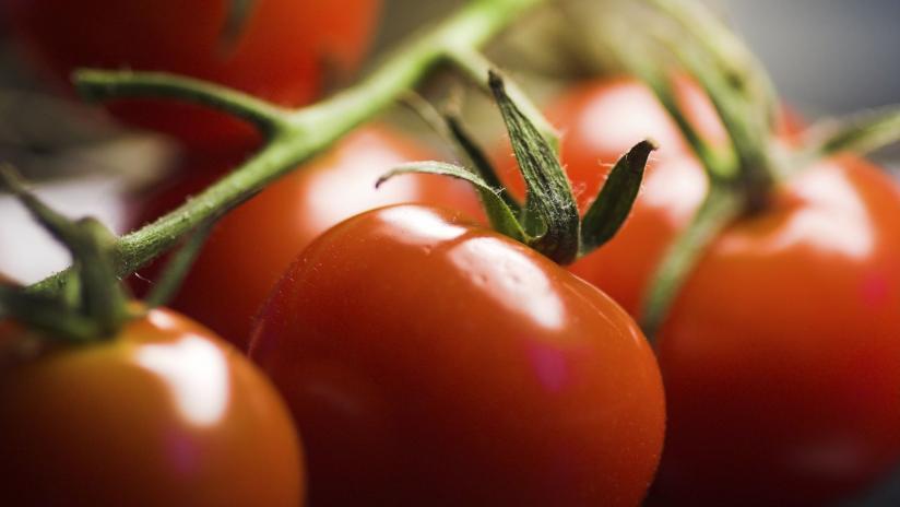 succo di pomodoro per il cancro alla prostata