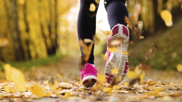 Attività fisica e regolarità degli esercizi