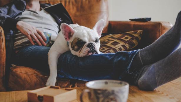 Combattere la sedentarietà: come migliorare lo stile di vita