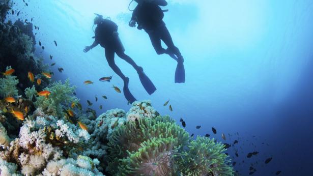 Immersioni subacquee: come evitare i pericoli della risalita