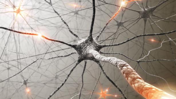 Sclerosi Multipla: quali sono i sintomi della SM
