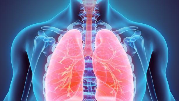 Tubercolosi, sintomi e trasmissione
