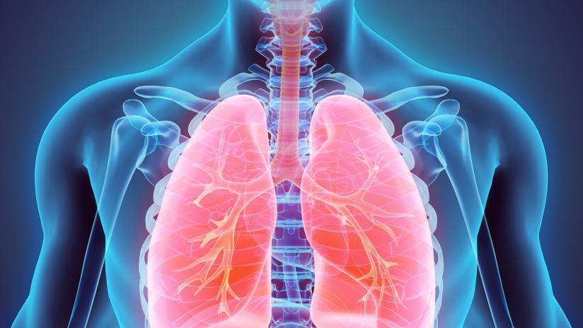 tubercolosi sintomi e trasmissione