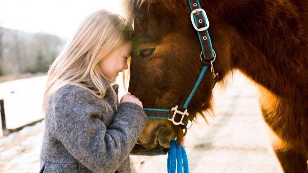 Ippoterapia e riabilitazione equestre