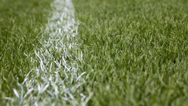 Campi in erba sintetica, è allarme batteri