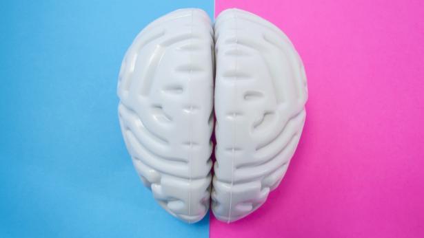 Cervello femminile e cervello maschile: quello delle donne è più giovane