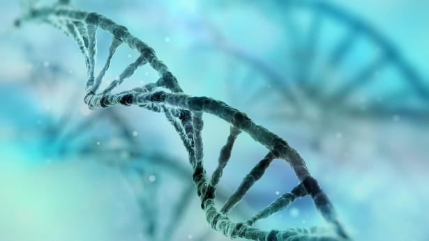 CRISPR: uno strumento per modificare il codice genetico