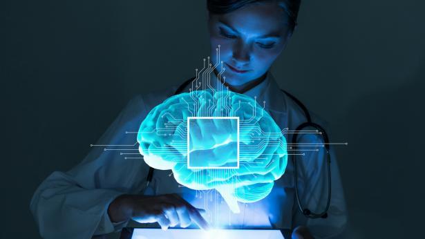 Un cervello in provetta: riprodotto il primo organoide completo